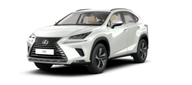Lexus NX NX 300 AWD 300 AWD Exclusive 2