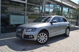 Audi Q5 2010 г. (серый)
